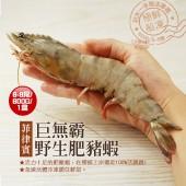 【築地一番鮮】特大-肥滋滋野生肥豬蝦(6-8尾/600g/盒)-免運組