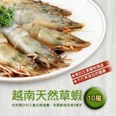 【築地一番鮮】越南天然大草蝦(10尾裝/盒)