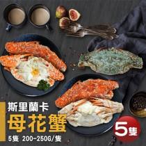 【築地一番鮮】斯里蘭卡生凍母花蟹5隻(200-250g/隻)免運