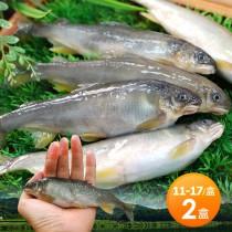 【築地一番鮮】宜蘭帶卵小香魚2盒組 (11-17尾裝/920g/盒)免運